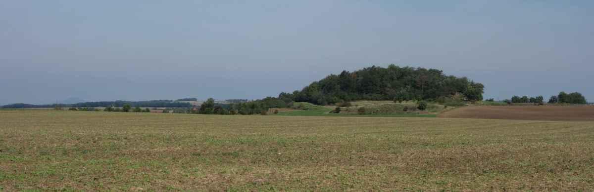 Vlevo vykukuje Říp a vpravo je Čičovický kamýk = pravý nefalšovaný ostrov poblíž Prahy, protože před miliony let vykukoval uprostřed křídového moře. Kamýk je tvořený starohorními usazenými křemitými horninami (buližník), které odolaly příboji moře, což dokládají stopy vln na jeho bocích. Povrch je zalesněný, na vrcholu stojí pozůstatky kamenné zídky - co zde ale kdy stálo, to se již neví.