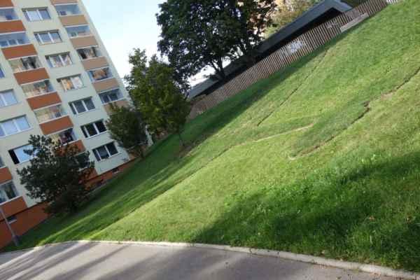 Holt trávě neporučíš... Jen doufám, že tu za dva roky nezbyde jen obrys tvořený kovovým obrubníčkem.