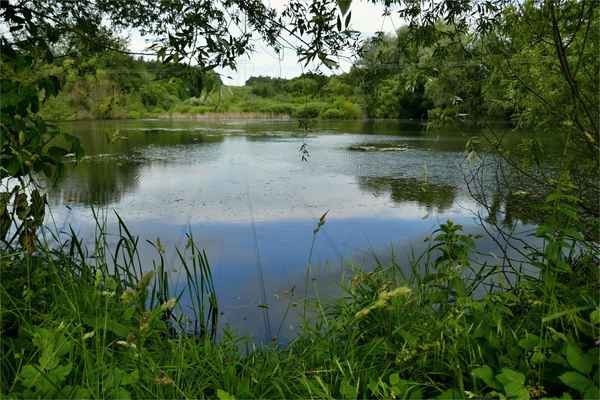 Horní rybník u Popůvek