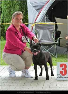Kalashnikov Domidar Dogs (Glimmer Man Domidar Dogs X Grinning Devils Domidar go Ballistic) - Psi - třída otevřená - V3