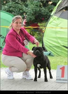 Keep Up With Domidar Dogs (Glimmer Man Domidar Dogs X Grinning Devils Domidar go Ballistic) - Psi - třída vítězů - V1, CAC