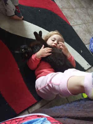 27.5.2021 - Adélka je miloučká a mazlivá kočička, které by vyhovoval domov u kočičích kamarádů a je vhodná i do rodiny s dětmi, ke kterým má přátelský vztah.