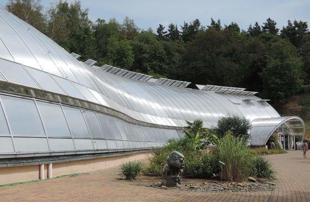 První sobotu v srpnu jsem zcela neplánovaně navštívila Botanickou zahradu v Tróji, jejiž součástí je i skleník Fata Morgana.