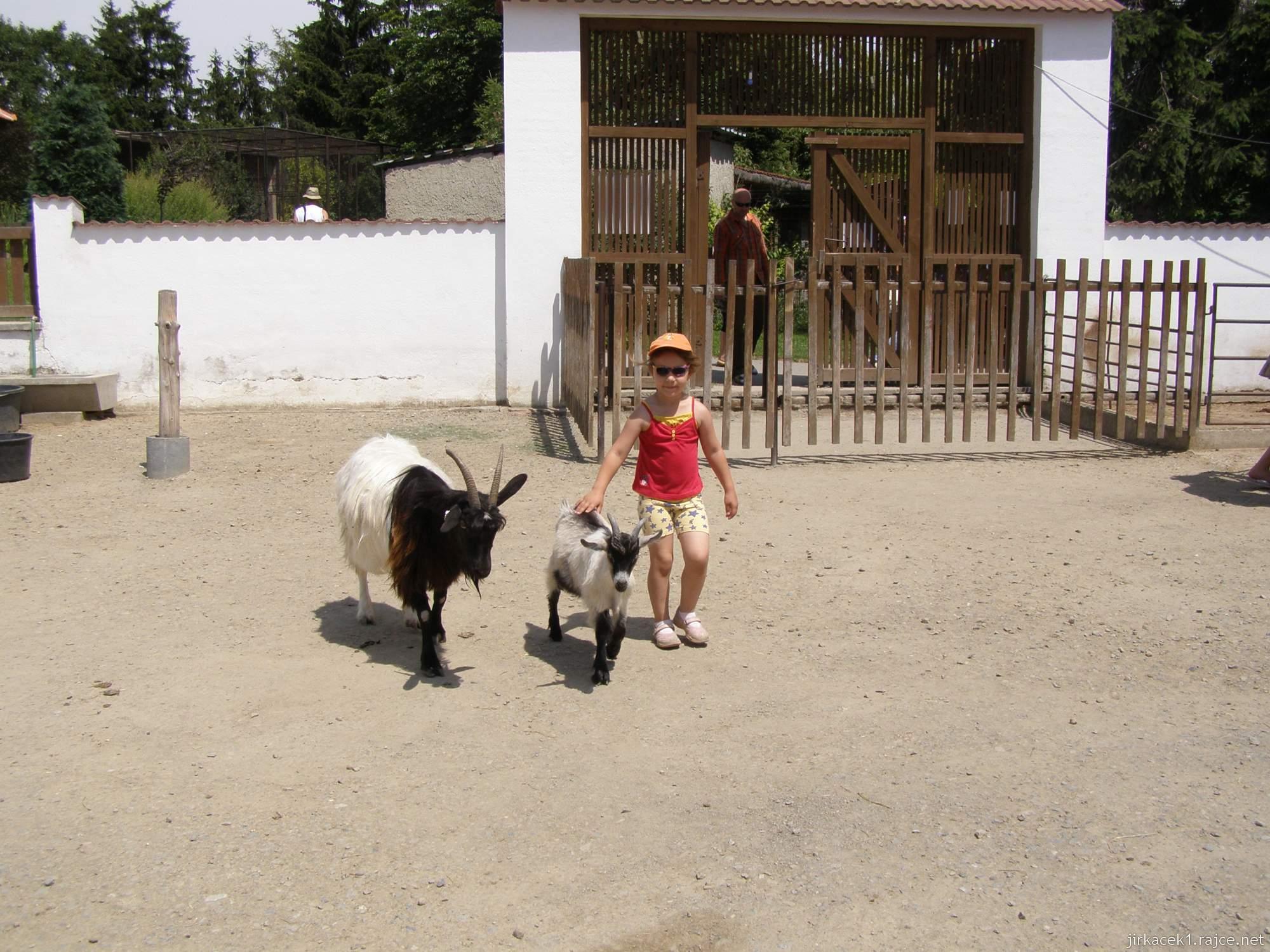 Zoopark Vyškov - babiččin dvoreček