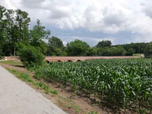 Cihlový most - Cihlový most býval jediným přístupem k Letohrádku Portz, který byl vystavěn na ostrůvku.